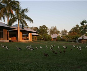 Feathers Sanctuary - Phillip Island Accommodation
