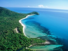 Cape Tribulation Camping - Phillip Island Accommodation
