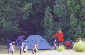 Maria Island Camping Ground - Phillip Island Accommodation