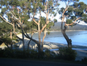 Bruny Island Retreat - Phillip Island Accommodation