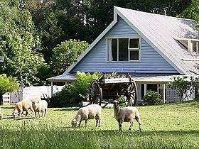 Hide-Away Cottage Retreat - Phillip Island Accommodation