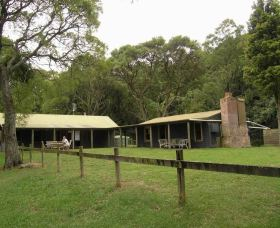 Tree Fern Lodge - Phillip Island Accommodation