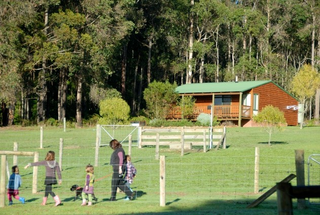 Diamond Forest Farm Stay - Phillip Island Accommodation