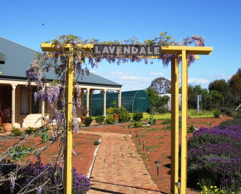 Lavendale Farmstay and Cottages - Phillip Island Accommodation