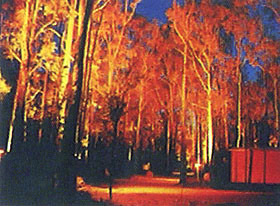 Dwellingup Chalet amp Caravan Park - Phillip Island Accommodation