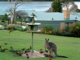 Gipsy Point Lakeside - Phillip Island Accommodation