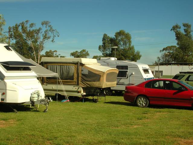 Crocodile Caravan Park - Phillip Island Accommodation