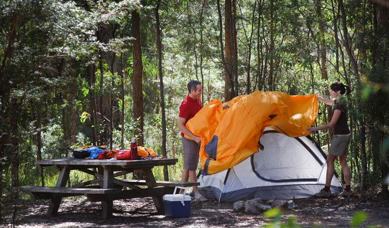 Bald Rock campground and picnic area - Phillip Island Accommodation