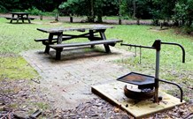 Bellbird campground - Phillip Island Accommodation