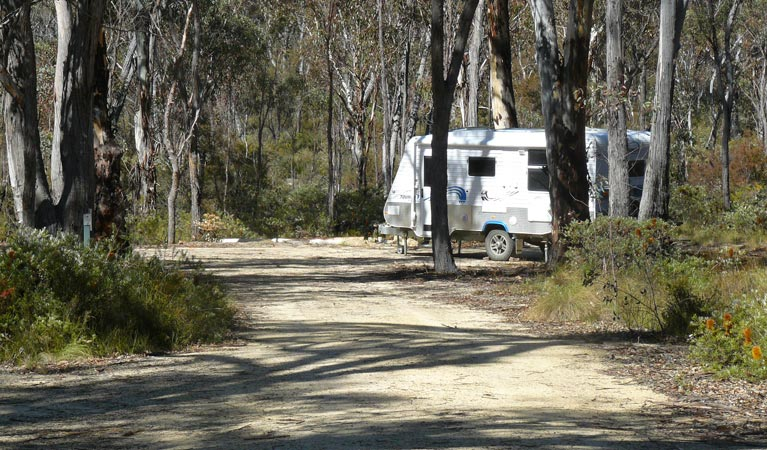 Blatherarm campground and picnic area - Phillip Island Accommodation