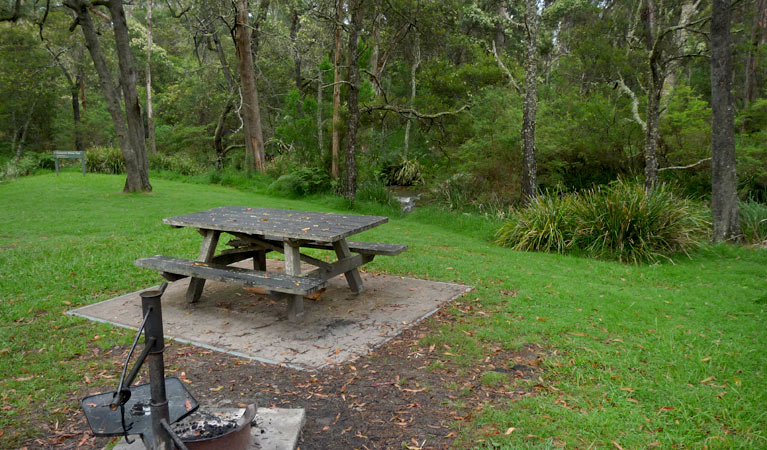 Chaelundi campground - Phillip Island Accommodation