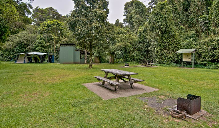 Forest Tops campground - Phillip Island Accommodation