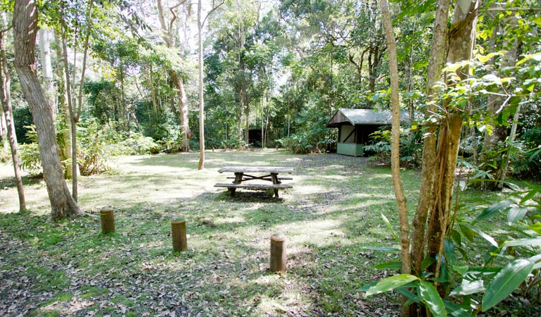 Iron Pot Creek campground - Phillip Island Accommodation