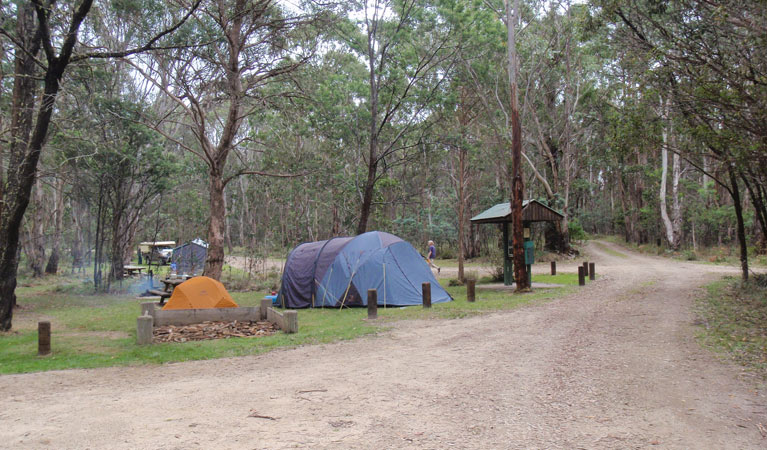 Native Dog campground - Phillip Island Accommodation