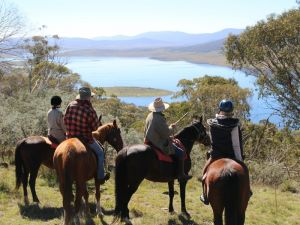 Reynella Homestead and Horseback Rides - Phillip Island Accommodation