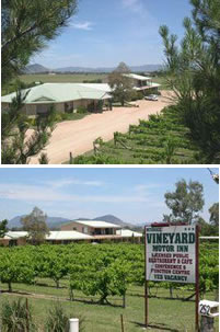 Mudgee Vineyard Motor Inn - Phillip Island Accommodation