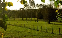 Stone Cottage Mittagong - Phillip Island Accommodation