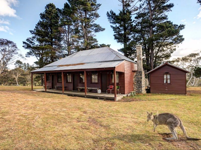 The Pines Cottage - Phillip Island Accommodation