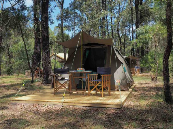 Tall Trees Camping on the Great Ocean Road - Phillip Island Accommodation