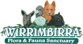Wirrimbirra Sanctuary - Phillip Island Accommodation