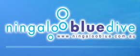 Ningaloo Blue Dive - Phillip Island Accommodation