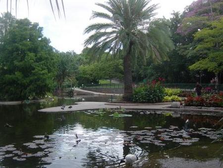 Brisbane City Botanic Gardens - Phillip Island Accommodation