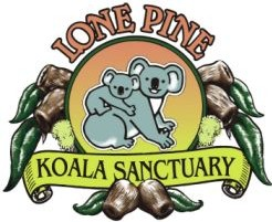 Lone Pine Koala Sanctuary - Phillip Island Accommodation