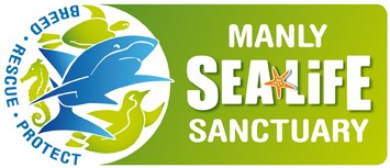 Manly SEA LIFE Sanctuary - Phillip Island Accommodation