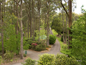 Mount Lofty Botanic Garden - Phillip Island Accommodation