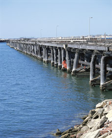 Old Timber Jetty - Phillip Island Accommodation