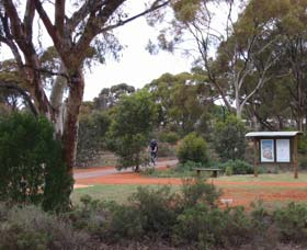 Gribble Creek Walk and Cycle Way - Phillip Island Accommodation