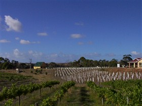 Deep Creek Wines and Alpacas - Phillip Island Accommodation
