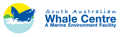 South Australian Whale Centre - Phillip Island Accommodation