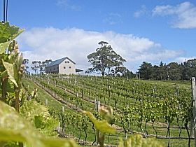 Bruny Island Premium Wines Bar and Grill - Phillip Island Accommodation