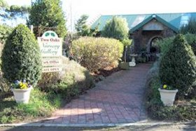 Two Oaks Nursery Gallery and Cafe - Phillip Island Accommodation