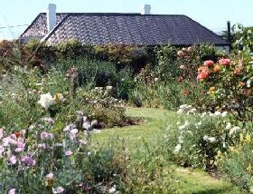 Rosedown Gardens - Phillip Island Accommodation