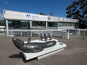 Australia's Antarctic Headquarters - Phillip Island Accommodation