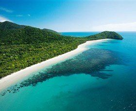Cape Tribulation Daintree National Park - Phillip Island Accommodation