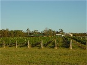 Kingsley Grove Estate - Phillip Island Accommodation