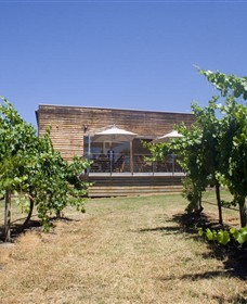 Shantell Vineyard - Phillip Island Accommodation