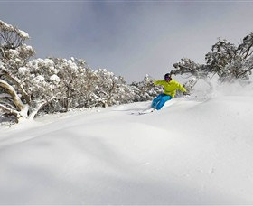 Mt Buller and Mt Stirling Alpine Resort - Phillip Island Accommodation