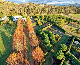 High Country Maze - Phillip Island Accommodation