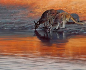 Steve Morvell Wildlife Art - Phillip Island Accommodation