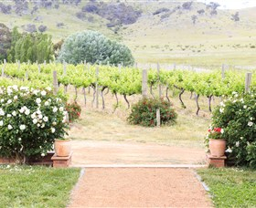 Brindabella Hills Winery - Phillip Island Accommodation