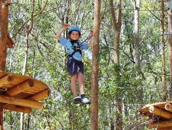TreeTops Newcastle - Phillip Island Accommodation