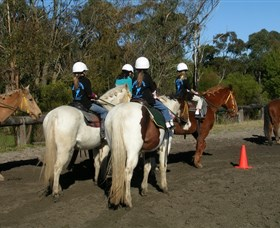 Darkes Forest Riding Ranch - Phillip Island Accommodation