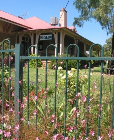 Dunedoo Local Museum - Phillip Island Accommodation