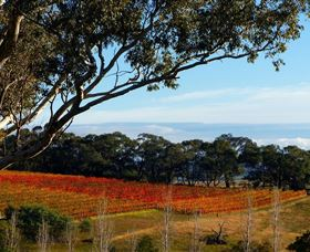 Bloodwood Estate - Phillip Island Accommodation