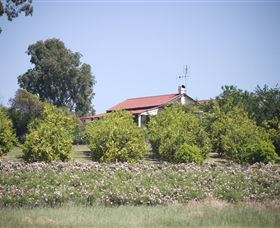 Samaria Farm - Phillip Island Accommodation