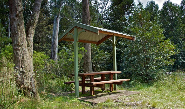 Devils Hole lookout walk and picnic area - Phillip Island Accommodation